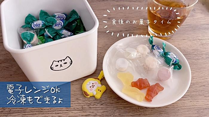 電子レンジ・冷凍も出来る猫柄の保存容器